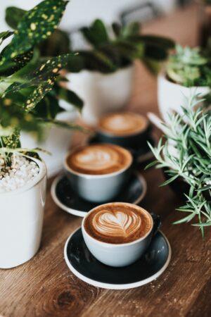 Three latte by plants.